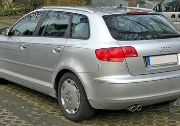 Dywaniki samochodowe Audi A3 II